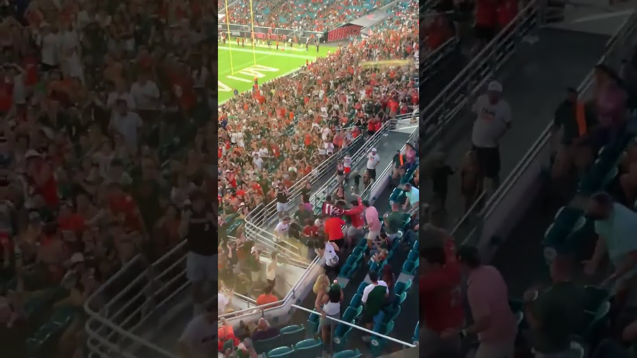 FANS CATCH FALLING CAT AT MIAMI GAME 😱😱 #shorts