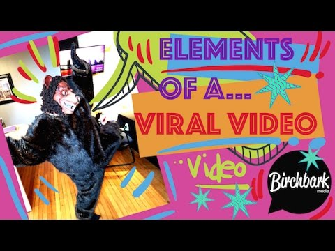 8 Key Elements of a Viral Video