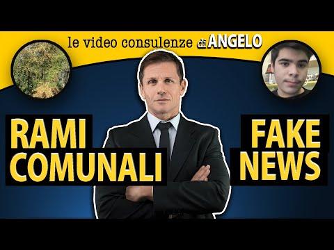 Le video consulenze di Angelo #3 | avv. Angelo Greco