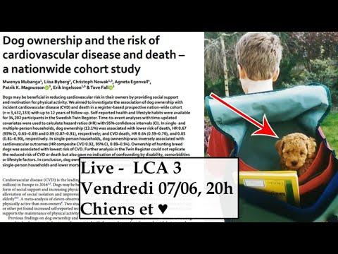 """Live LCA - """"Les chiens sont-ils bon pour le coeur ?"""""""