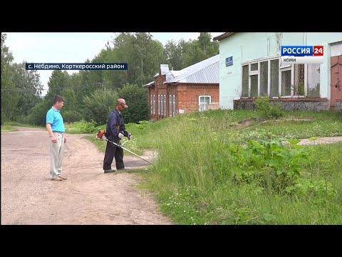 В Нёбдино 7 лет не могут решить проблему с борщевиком