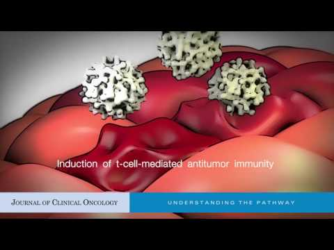 Oncolytic Virus-Mediated Immunotherapy: A Combinatorial Approach for Cancer Treatment