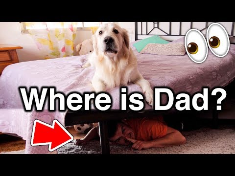 Can My Dog Find Me Under the Bed?