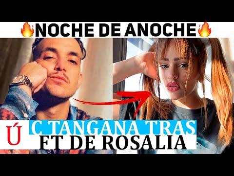 ¡Wow! El mensaje oculto de C. Tangana a Rosalía tras La Noche De Anoche ft Bad Bunny ¡Qué fuerte!