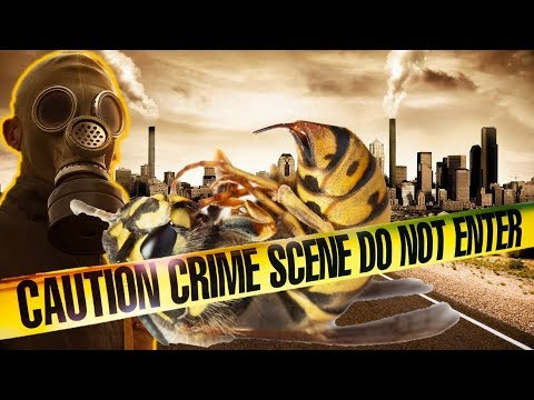 Breaking end time signs: Insect APOCALYPSE is Coming! - Something Biblical & Prophetic is Happening!