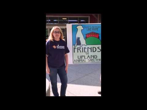 Giving Back in Upland, CA - Banfield Pet Hospital