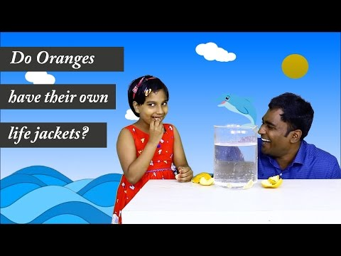 Do oranges have their own life jackets? LMES kids -2