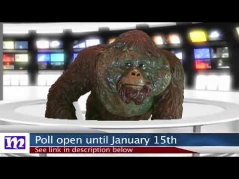 Poll Update   President of the Jungle 2017   MMNN Newsbreak   Many Miniatures Theater