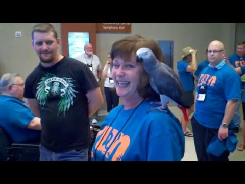 IAI 2012 Phoenix Mid Week Event - EVIDENT