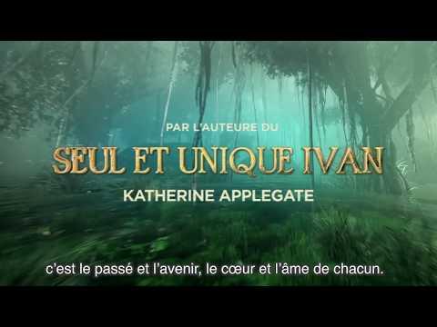Vidéo de Katherine A. Applegate
