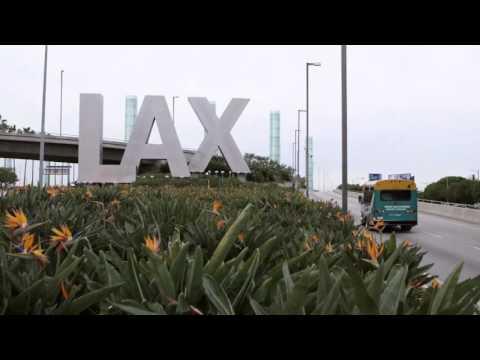 Discover L.A.'s Neighborhoods: LAX Corridor