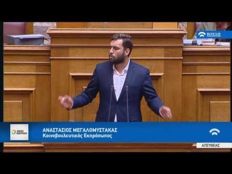 Α. Μεγαλομύστακας/Ολομέλεια, Βουλή/4-8-2017