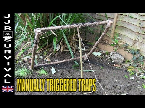 Manually Triggered Traps