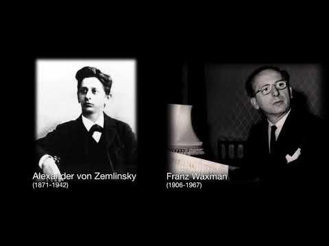 Neue Jüdische Kammerphilharmonie beim Amadeu Antonio Preis 2017