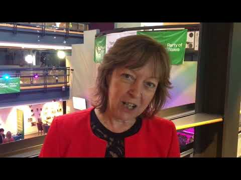 'We're United & Looking to the Future' - Jill Evans MEP