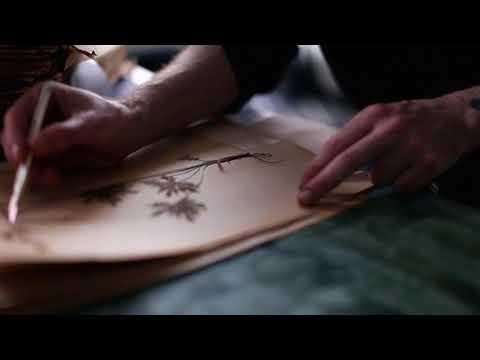 Martin Bergström - Flora Hysterica - sneak peek video