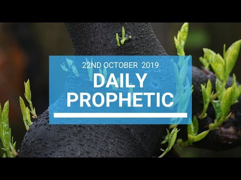 Daily Prophetic 22 October 2019 Word 1