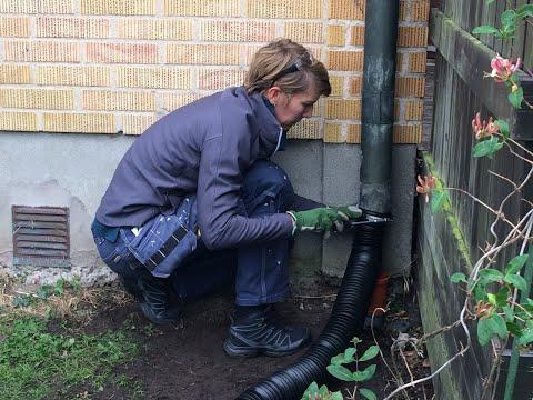 Led ut regnvatten i trädgården med flexibelt rör