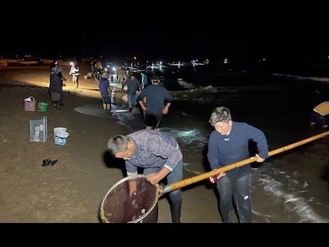 '20 Yılda Bir Yaşanıyor' Vatandaşlar Sahile Akın Etti, Kilolarca Topladı