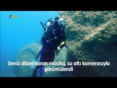 NTV   NTV yönetmeni su altı kamerasıyla denizin dibini görüntüledi
