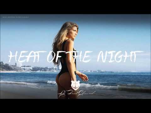 Jayceeoh & Sasha Grey - Heat Of The Night ft. Bella - UCUavX64J9s6JSTOZHr7nPXA