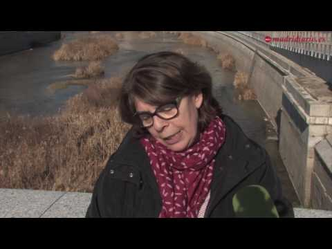 La vida vuelve al río Manzanares