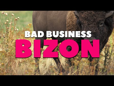 Bizon / What Makes You Leave a Server? (Bad Business)