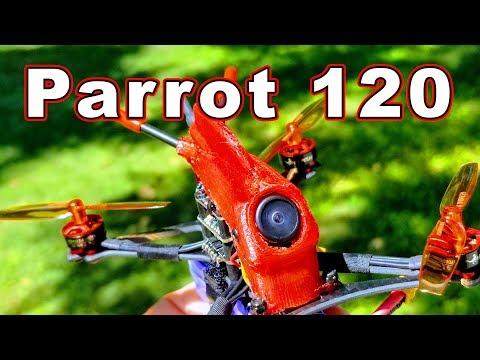 HGLRC Parrot 120 Toothpick Micro Drone  - UCnJyFn_66GMfAbz1AW9MqbQ