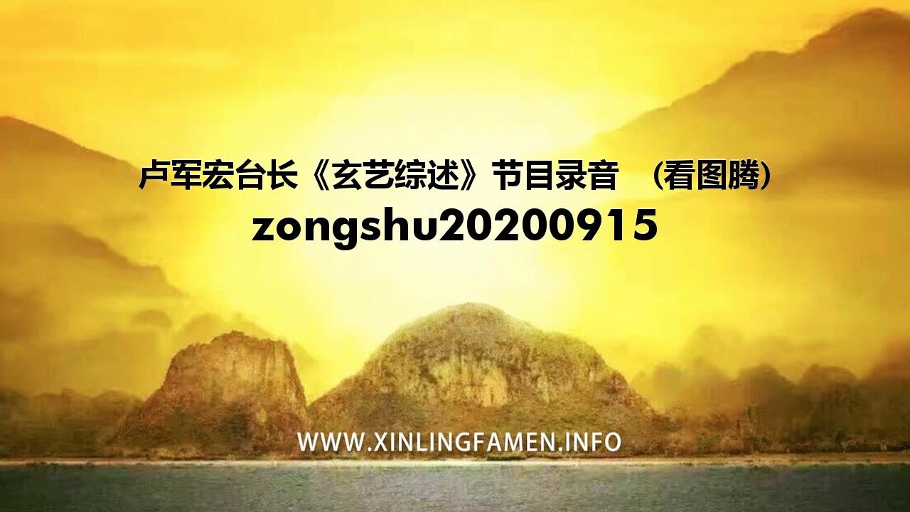 心灵法门 zongshu20200915 - 卢军宏台长《玄艺综述》节目录音  (看图腾)