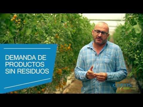 Videoblog Certis Europe - Blau Comunicación
