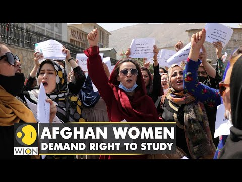 Decades of progress undone in Kabul, Afghan women barred from higher study   WION English News
