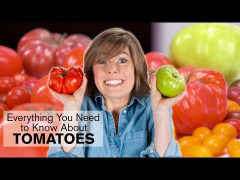 Everything You Need to Know About Tomatoes | Dish with Julia | Allrecipes.com - UC4tAgeVdaNB5vD_mBoxg50w