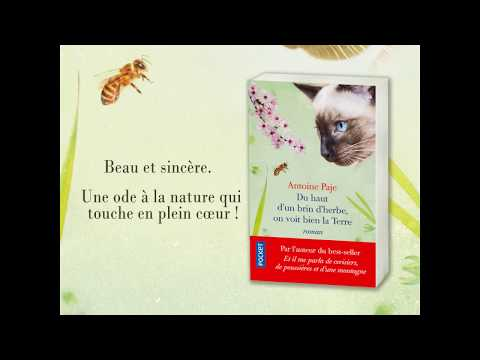 Vidéo de Antoine Paje