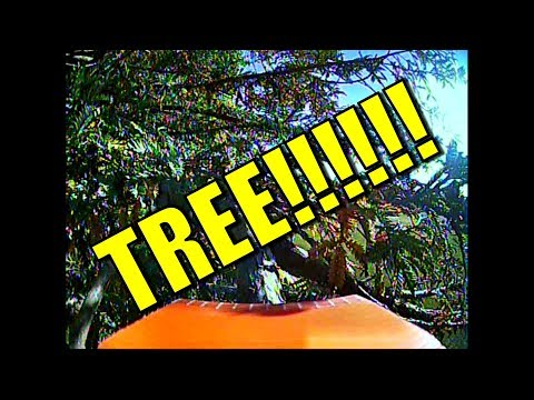 Fail and crash - RC plane versus tree, no contest. - UCQ2sg7vS7JkxKwtZuFZzn-g
