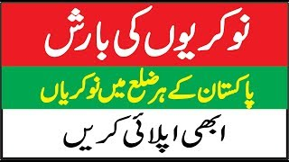 Candidate Testing Service (CTS) has announced multiple Jobs in Every District | Technical Zameer