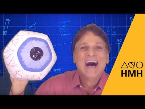 HMH Science Spark | Build a Pinhole Viewer