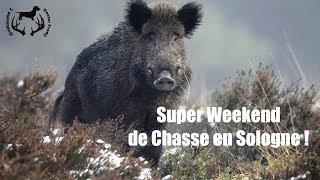 Super weekend de chasse en Sologne