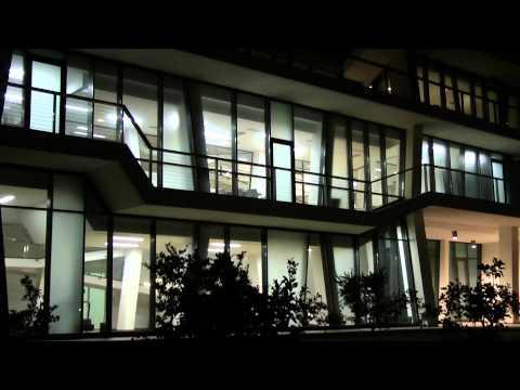 video della lemon factory, Italia