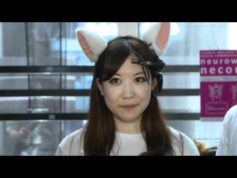 TGS: Cat Ears That Read Your Mind - UCKy1dAqELo0zrOtPkf0eTMw