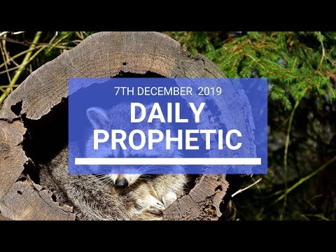 Daily Prophetic 7 December 2 of 4