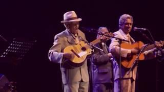 Compay Segundo - Sabroso (Live Olympia París 1998)