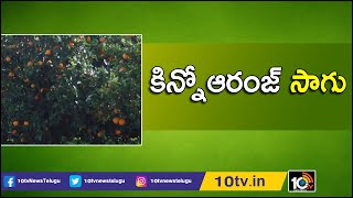 కిన్నోఆరంజ్ సాగు | Success Story of Farmer In Kinnow Orange Cultivation | Matti Manishi | 10TV News