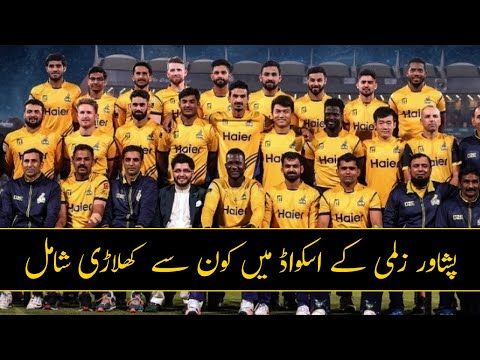 Peshawar Zalmi Team Analysis: Squad Review, Records, Strengths, Weaknesses