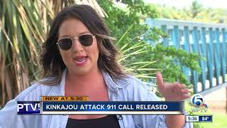 911 calls released after kinkajou attacks man in Lake Worth Beach