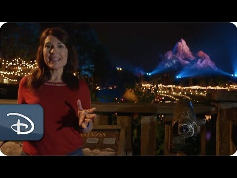 Disney Parks Moms Panel | Disney's Animal Kingdom Park After Dark - UC1xwwLwm6WSMbUn_Tp597hQ