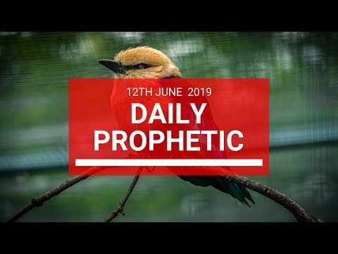Daily Prophetic 12 June 2019   Word 2