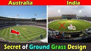 What is The Grass Design in Australian Cricket Grounds । क्रिकेट ग्राउंड में घास डिज़ाइन क्यों