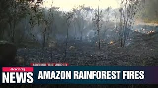Wildfires in Amazon Rainforest hit record high in July, climate change cited as reason