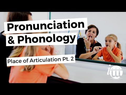 Pronunciation and Phonology in the EFL Classroom - Place of Articulation Pt. 2