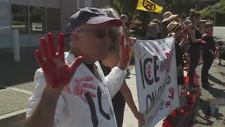 Street outside Portland ICE center runs red with 'blood'